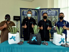 CFS Sejahtera Green Campus Project: Pineapple Planting Workshop