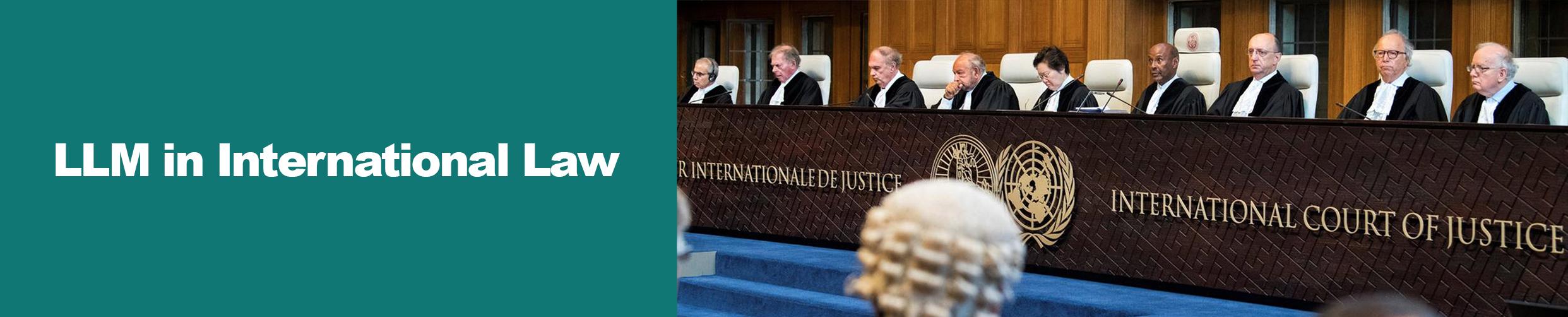 LLM in International Law