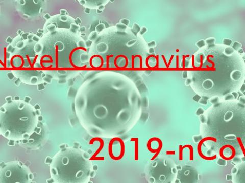 UPDATES ON NOVEL CORONAVIRUS (2019-nCoV) SURVEILLANCE