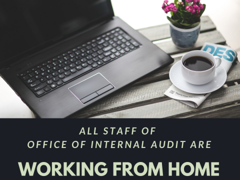 CLOSURE OF OFFICE OF INTERNAL AUDIT FROM 18 MARCH TO 31 MARCH 2020